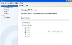 Auslogics File Recovery(数据恢复专家) v6.1 免费版