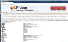 Firebug 网页开发工具 v2.0.19 官方版