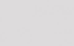 叉叉保衛蘿卜助手 v1.01 安卓最新版