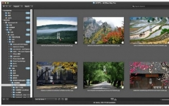 ACDSee Pro for mac v3.6 build 182 官方最新版