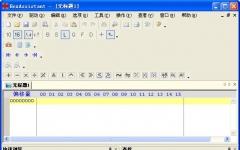 HexAssistant_十六进制代码编辑器 2.8 绿色版