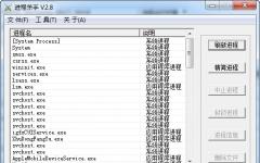 进程杀手(进程监视管理软件) V3.0 绿色版