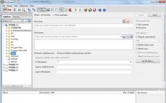 IDM UltraFinder(硬�P文件搜索工具) v17.0.0.11 免�M版