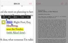 Adobe Reader iOS版 V15.0.4 官网ios版