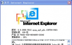Internet Explorer 6(ie6瀏覽器32/64位) v6.0.2900.5512 官方版