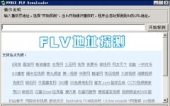 flv视?#26723;?#22336;嗅探器(VVBOX FLV Downloader) 1.0.0.0 绿色版