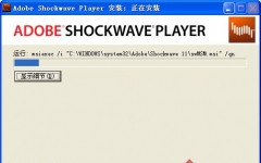 Adobe Shockwave Player v12.1.3.153 中文版