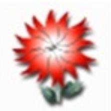 滴果取文件MD5值工具 V1.1 绿色免费版