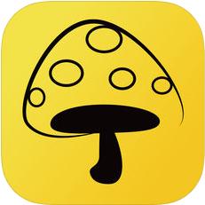 蘑菇丁 V2.5.28 安卓版