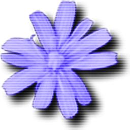 Cloanto C64 Forever V8.0.8.0 电脑破解版