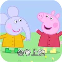會考上的小豬佩奇表情包 V1.0 免費版