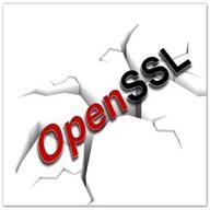 OpenSSL(安全套接字層密碼庫) V1.10 電腦版