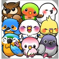 鸟鸟人生 V1.6.11 安卓版