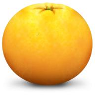 橘子水印添加器 V1.0.1 电脑版