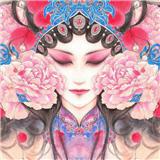 烟花巷 v1.2.8 安卓版