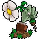 植物大战僵尸 V1.0.4 Mac版