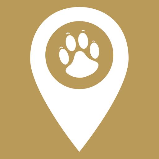 宠物智能伴侣 V1.0.1 安卓版
