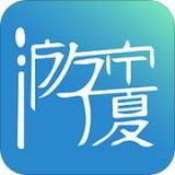 游宁夏 v1.2.5 安卓版