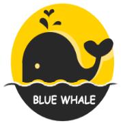 藍鯨魚舊物回收