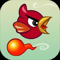 玩鸟过火 V1.0 安卓版
