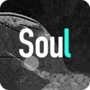 Soul 旧版本
