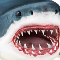 鲨鱼模拟器 全部解锁版