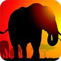 大象的背影H5