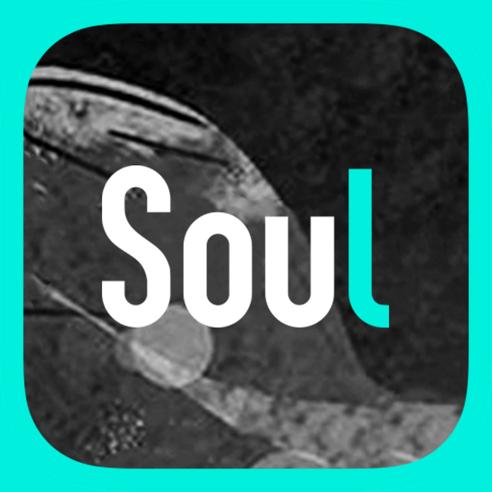 soul 隐身版
