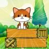 小猫救援大挑战 v1.0 苹果版