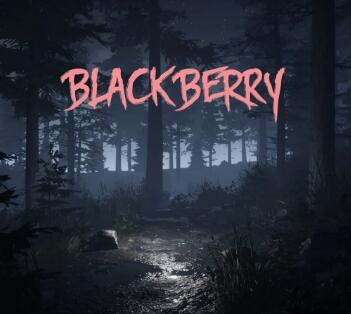 黑莓 V1.0 中文版