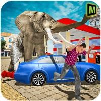 疯狂的大象 v1