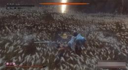 《只狼:影逝二度》什么忍义手好用?