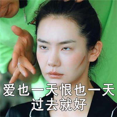 2019最新戚薇生气表情包大全