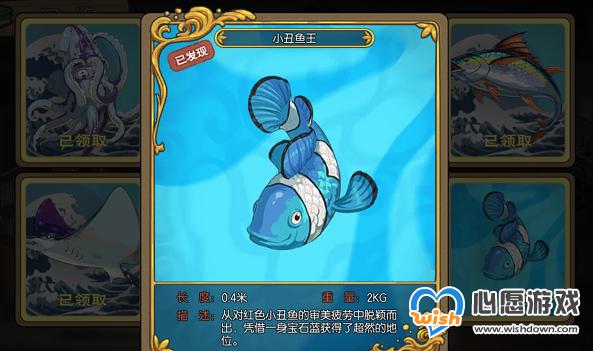 小森生活小丑鱼王钓取方法及位置一览