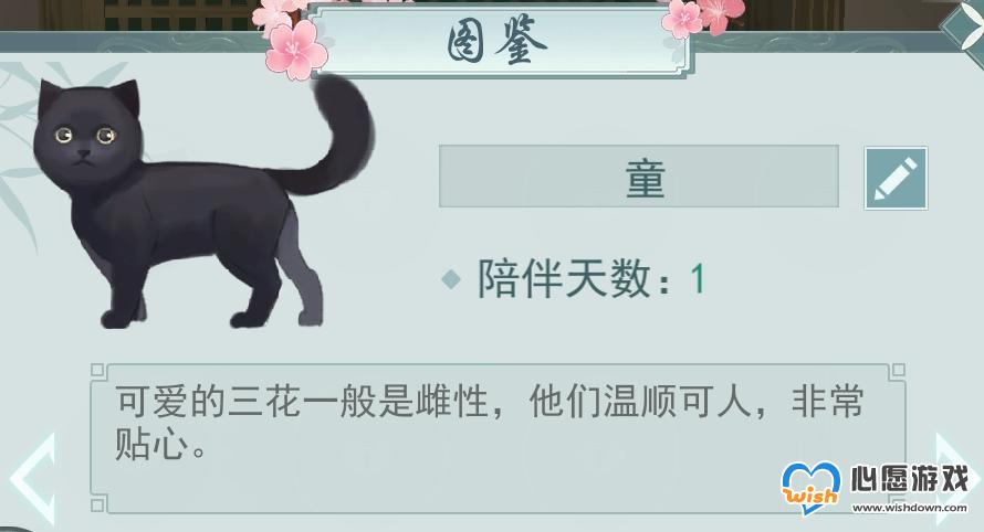 江湖悠悠宠物亲密度提升攻略_wishdown.com