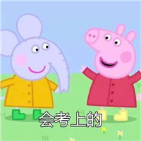 ��考上的小�i佩奇表情包_www.xfawco.com.cn