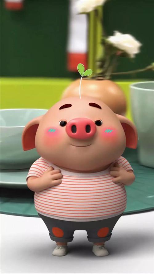 2019猪年可爱卡通小猪高清图片_可爱猪年宝宝壁纸图片