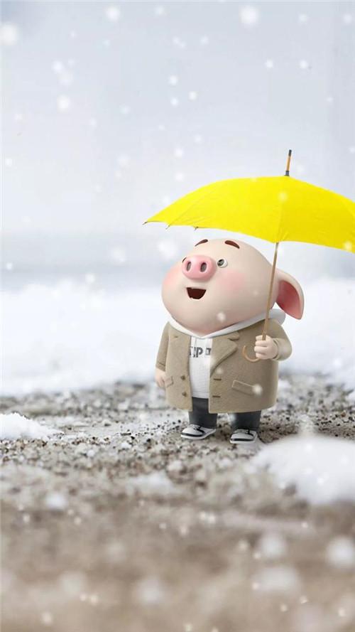 2019猪年猪宝宝高清图片壁纸