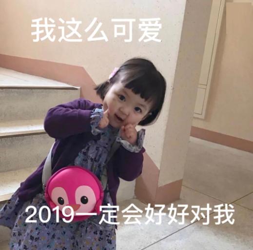 2019猪年可爱猪猪女孩过年表情包_wishdown.com