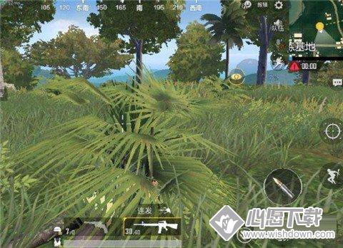 刺激战场雨林地图没有掩体怎么办?_wishdown.com