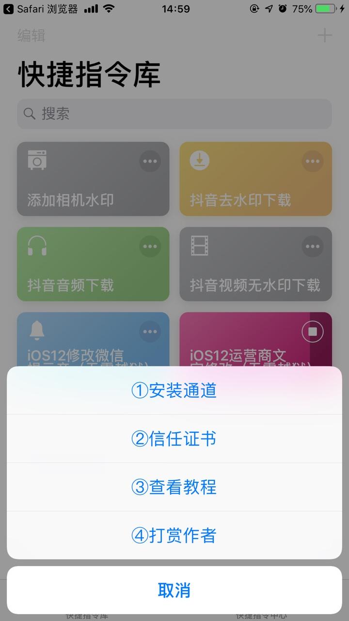 抖音ios12运营商文字怎么改?_wishdown.com