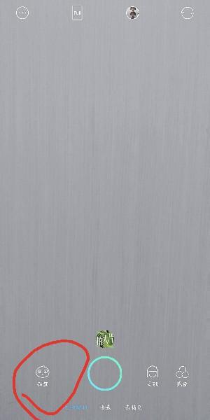 抖音头上有爱心小辫子特效在哪里?_wishdown.com