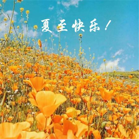 2019夏至快乐风景图片大全带字