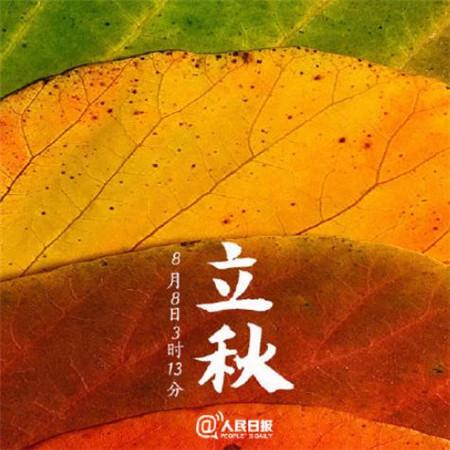 2019立秋节气图片唯美文艺_wishdown.com