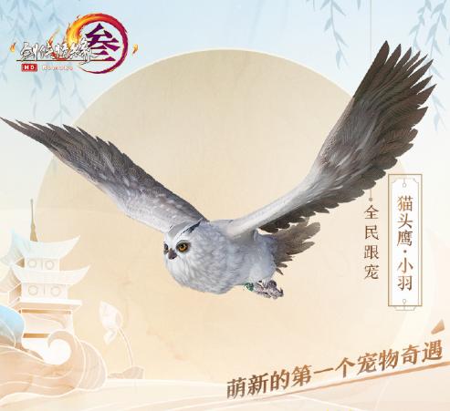 剑网3全民跟宠猫头鹰小羽获取攻略_wishdown.com
