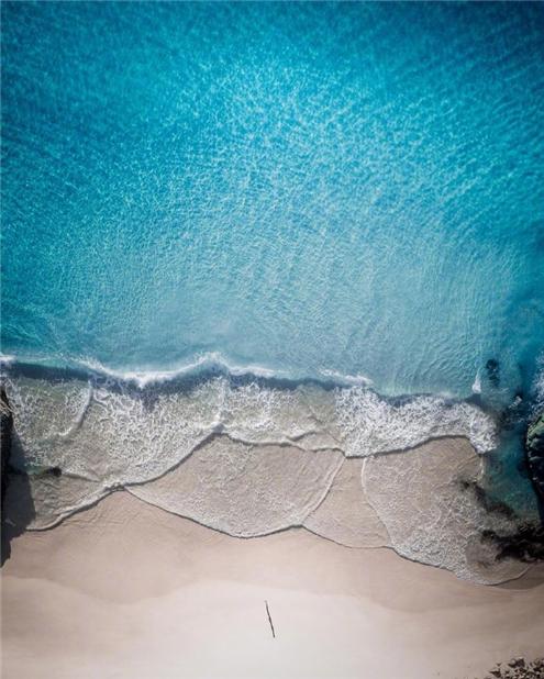 超好看的海边海豚图片大全_wishdown.com