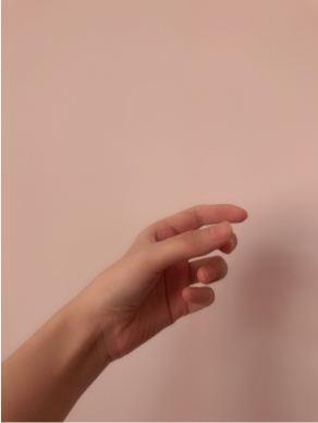 抖音手握花束图片怎么制作_wishdown.com