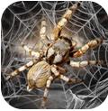 蜘蛛模拟生存 V1.0 安卓版