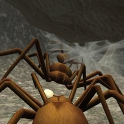蜘蛛殖民地模拟器