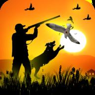 鸟类猎人挑战狙击射击3D